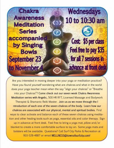 Experience the healing and enlightenment that comes from a Sacred Singing Bowl Sound Session or Concert. image